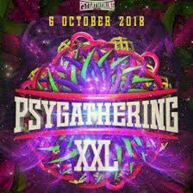 SynSUN : Live Set @ Psygathering XXL (retro fullon set) 06.10.2018