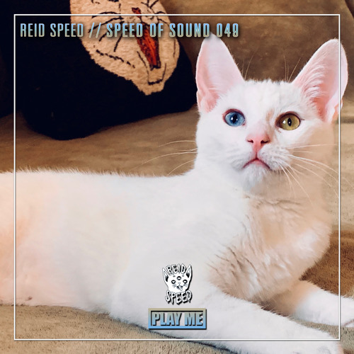 Rave Legend Sundays - Reid Speed : SPEED OF SOUND 049