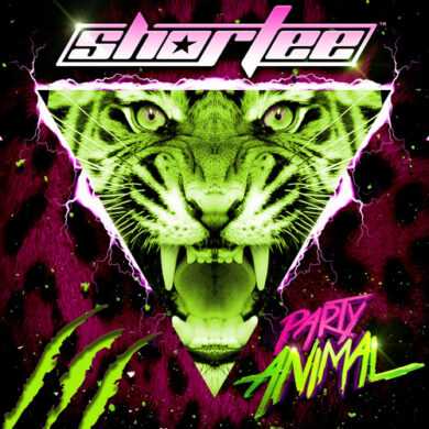 HEAVY ARTILLERY RECORDINGS : Shortee - Party Animal (free download)